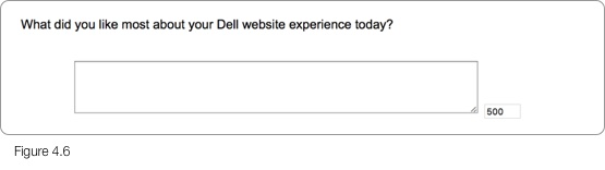 Dell Questionnaire Step 11